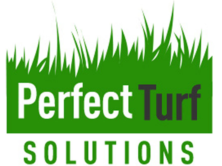 perfect turf synthetic grass